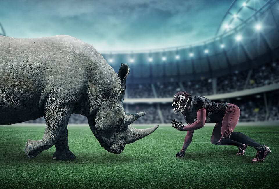 American football player vs rhino